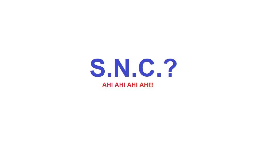 Hai scelto la Snc? Non potevi fare errore più grave